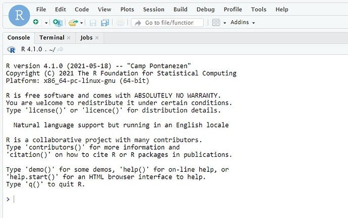 Rstudio with clean