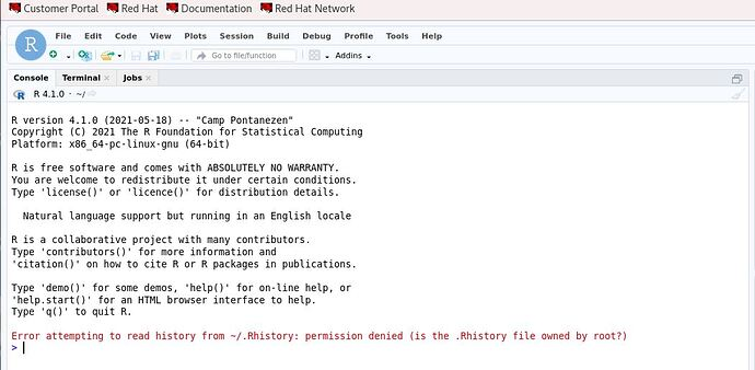 rstudio Rhistory permission error