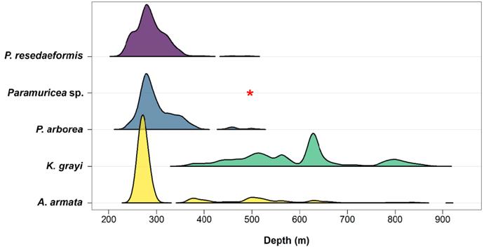 Ridgeline plot example
