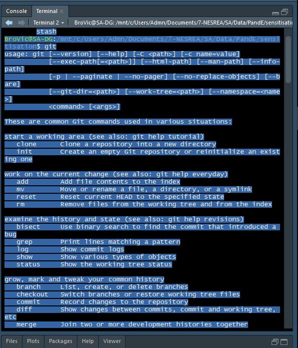 bash-rstudio-terminal